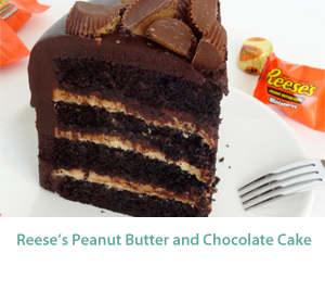 chocolate_peanut_butter_cake_MID