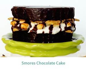 smores_chocolate_cake_MID