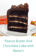 chocolate_peanut_butter_cake_MINI